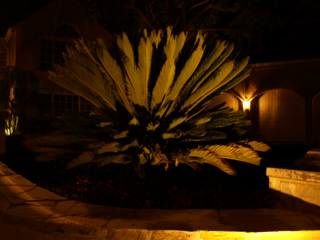 camarillo outdoor lighting